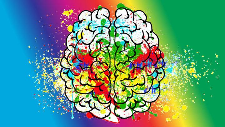 Mieli vaikuttaa siihen miten ravinto vaikuttaa kehoomme